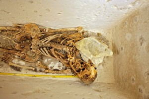 Skeletal remains of a high official from the 2nd half of the 5th dynasty (image © Martin Frouz, archive of the Czech Institute of Egyptology, CU FA).